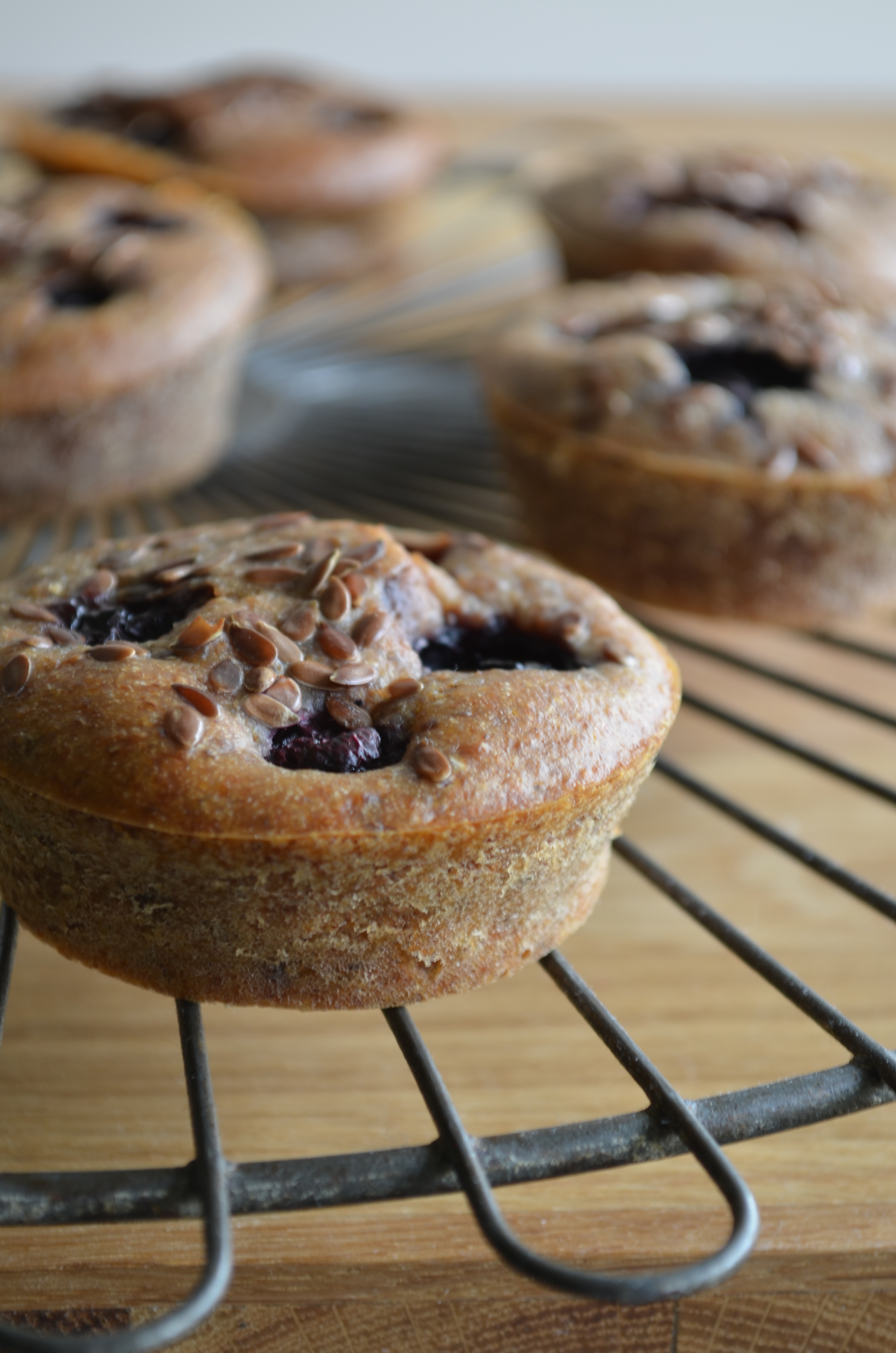 Blueberry Banana Breakfast Muffins